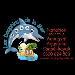 DAUPHINS DE LA MER nv logo 4Resized