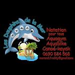 les dauphins de la mer - École de natation